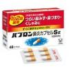 파브론 비염캡슐 Sα 48정